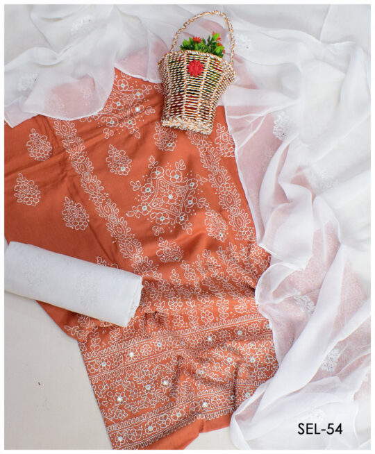 3 PC Hand Embroidered Shadow Chikankaari Suit with Chiffon Dupatta - SEL-54