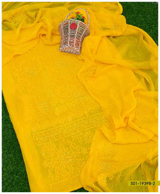 2 PCs Hand Embroidered Bamber Chiffon Chikankaari Work Shirt and Dupatta - S01-1939B2